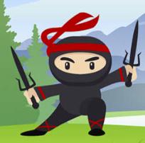 Workplace Ninjas