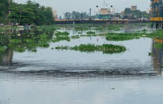 Lluvias continuarán este martes en parte del territorio nacional