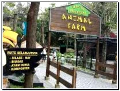 Wahana Animal Farm Eco Green Park