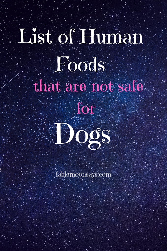 List of Human Food that is Not Safe for Your Dog