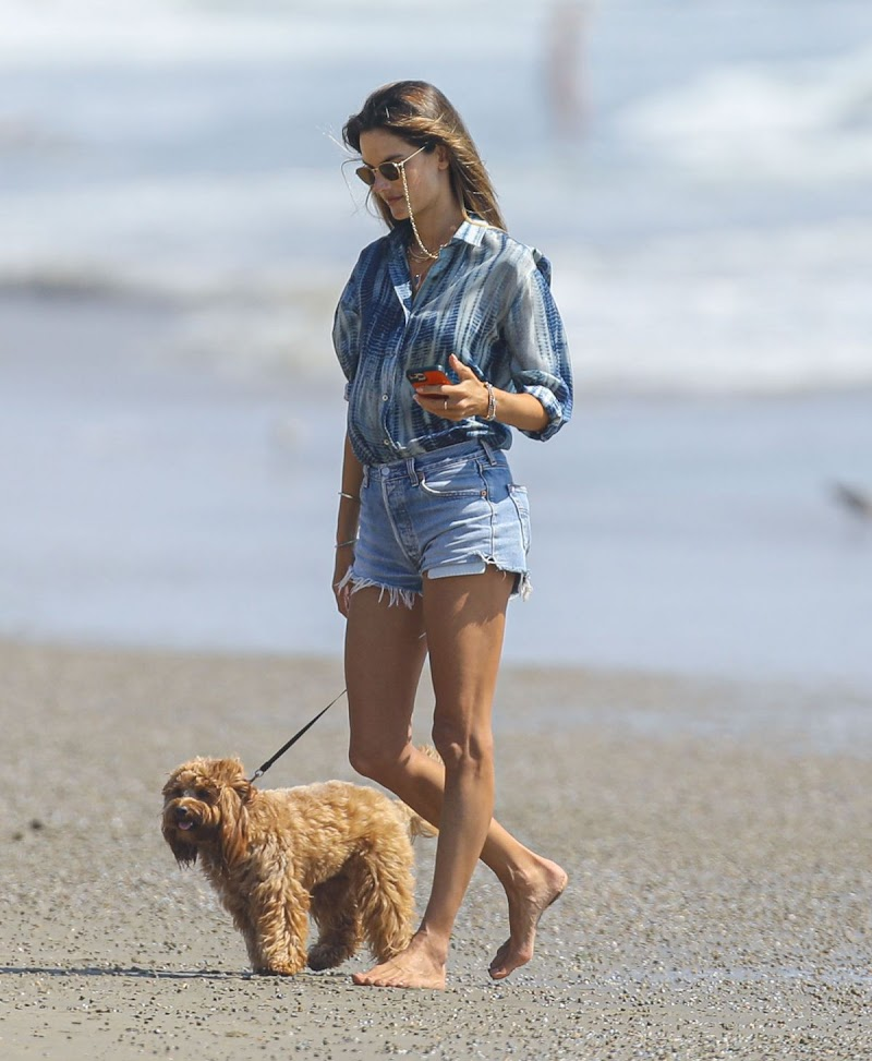 Alessandra Ambrosio Clicked Outside with Her Dog at a Beach in Malibu 4 Sep- 2020