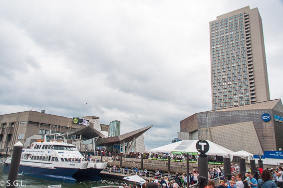 Acuario de Boston. 10 cosas que ver en Boston