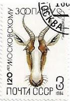Selo Bonteboque