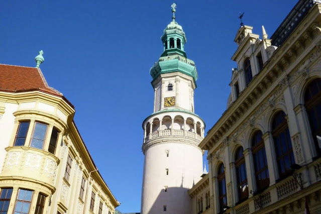 Vienna in winter: Sopron Hungary tower (day trip)