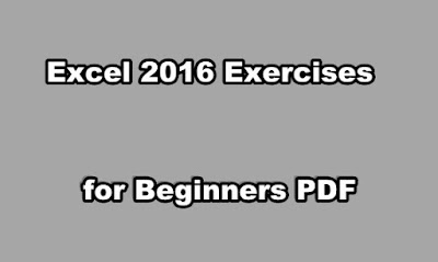 Excel 2016 Exercises for Beginners PDF