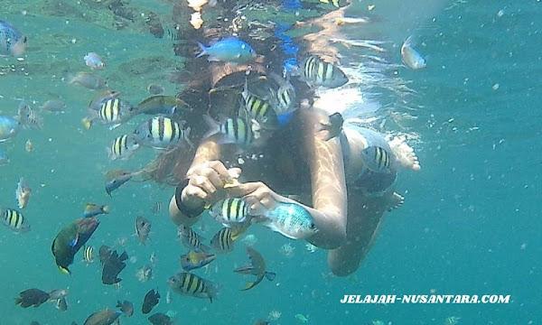 rencana perjalanan open trip pulau harapan