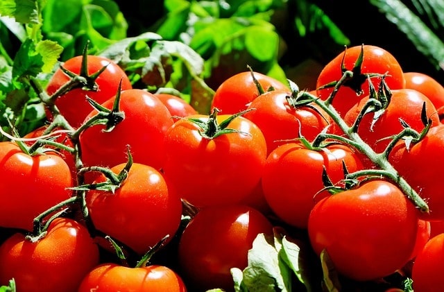 Tomato can causes kidney stones