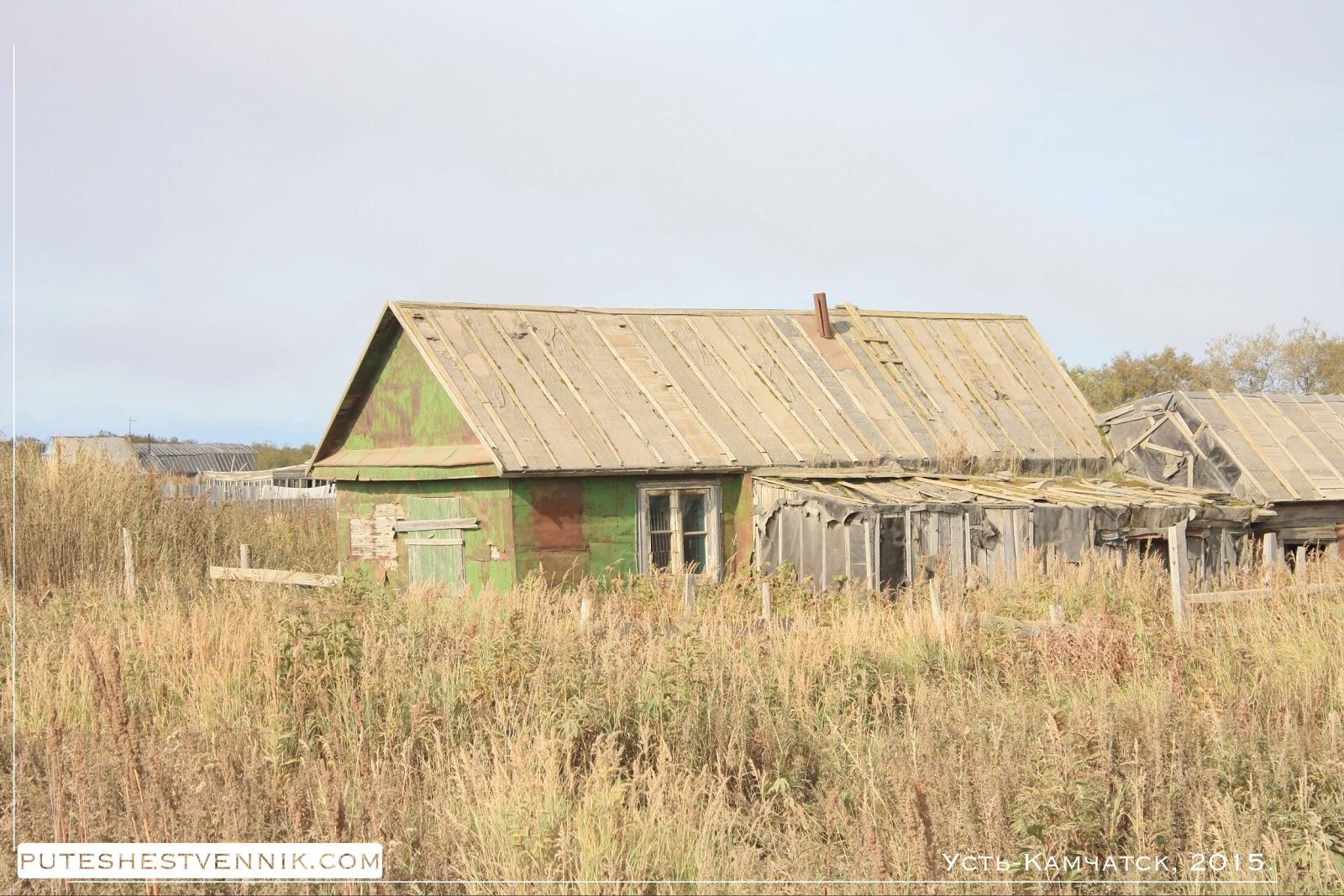 Деревянный дом и высокая трава