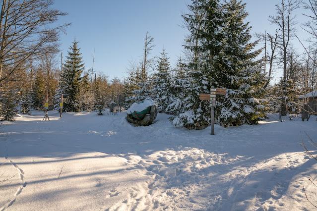 Wanderung auf den Lusen  Winterwandern im Nationalpark Bayerischer Wald 04