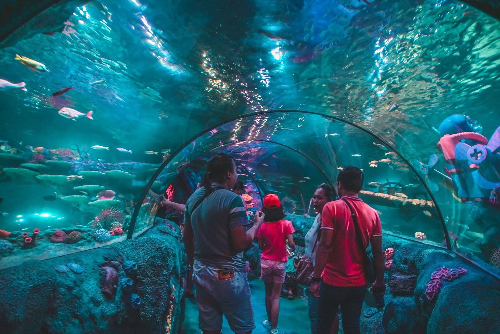 My Blogs: SEA LIFE, the World's Largest Aquarium Brand is ...