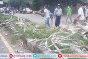 Adanya Penebangan Pohon, Petugas Polsek Marang Lakukan Pam dan Pengaturan Lalin