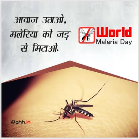 World Malaria Day Quotes