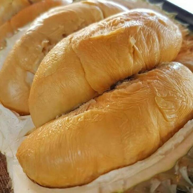 Bibit Tanaman Durian Duri Hitam Balikpapan