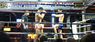 Thapae Boxing Stadium. Thai Boxing o Muay Thai.