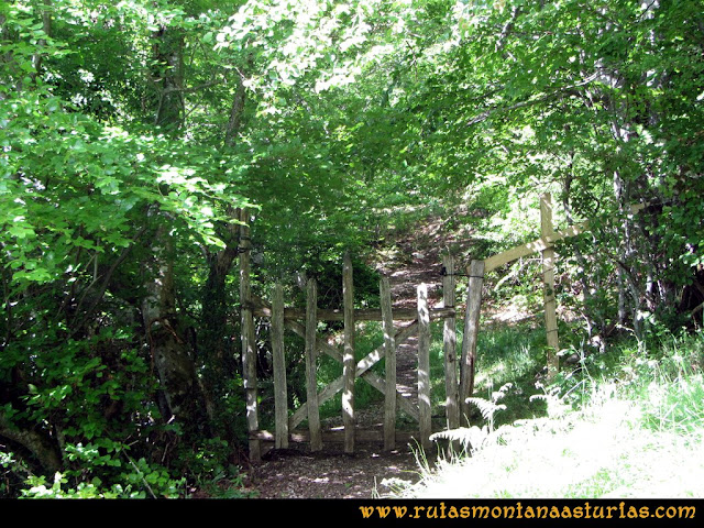Ruta Lindes - Peña Rueda - Foix Grande: Portilla de entrada al bosque