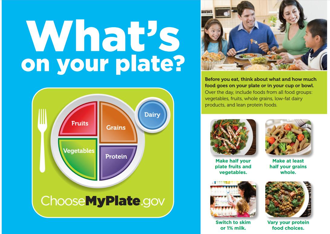 Bewise Program Choose My Plate