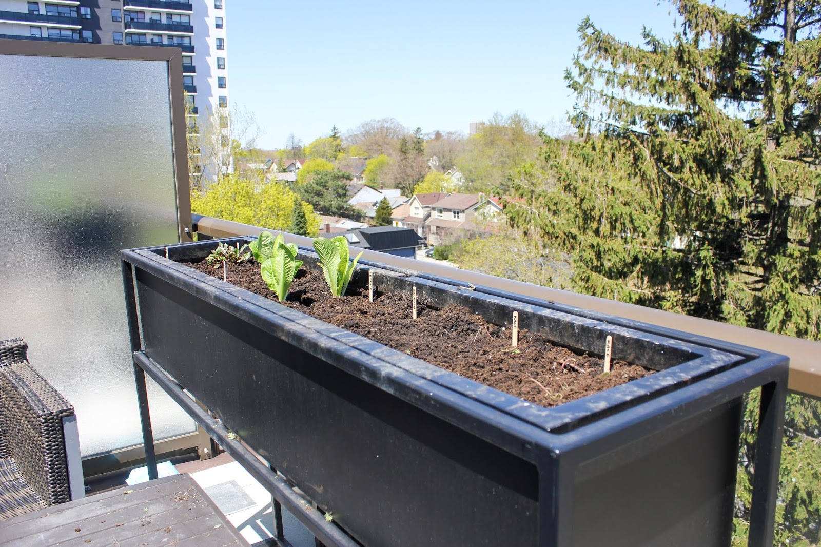 Urban Gardening - Creating a Condo Container Herb & Vegetable Garden