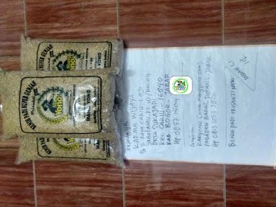 Benih padi yang dibeli KARMA WIJAYA Bogor, Jabar. (Sebelum packing karung ).