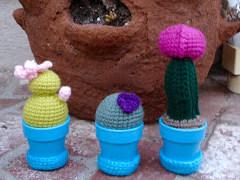 crochet cactus pattern Archives ⋆ Crochet Kingdom (8 free crochet ... | 180x240