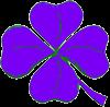 Trèfle violet