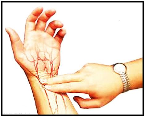 Sykkeen tunnustelu ranteesta; kaksi sormea suonen päälle kevyesti ja tuntuvan sykkeen laskeminen onnistuu.