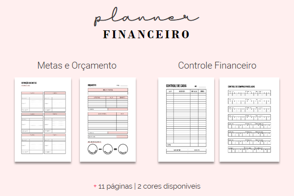 Planner Financeiro Completo para Download [2020]