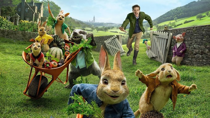 peter rabbit hindi