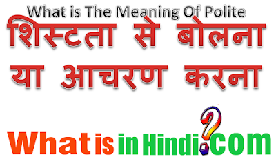 What is the meaning of Polite in Hindi