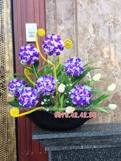 Hoa da pha le o pho Hang Can