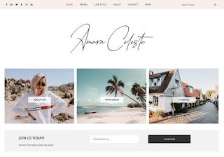 Amara Blogger Template