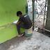 Construction Worker, Sinasagutan ang Kanyang Module Tuwing Break Time sa Kanyang Trabaho
