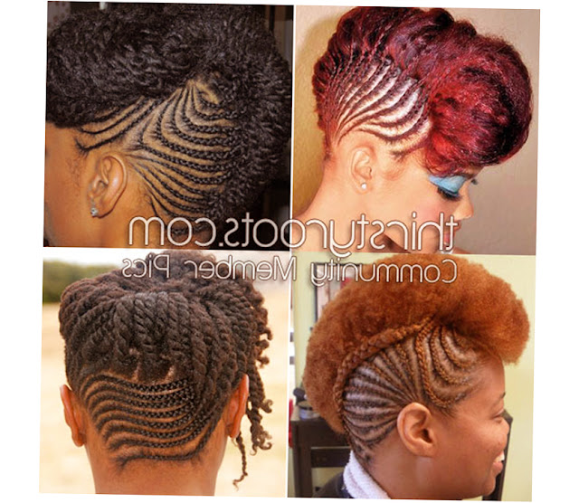 African American Braids Hairstyles Picture
