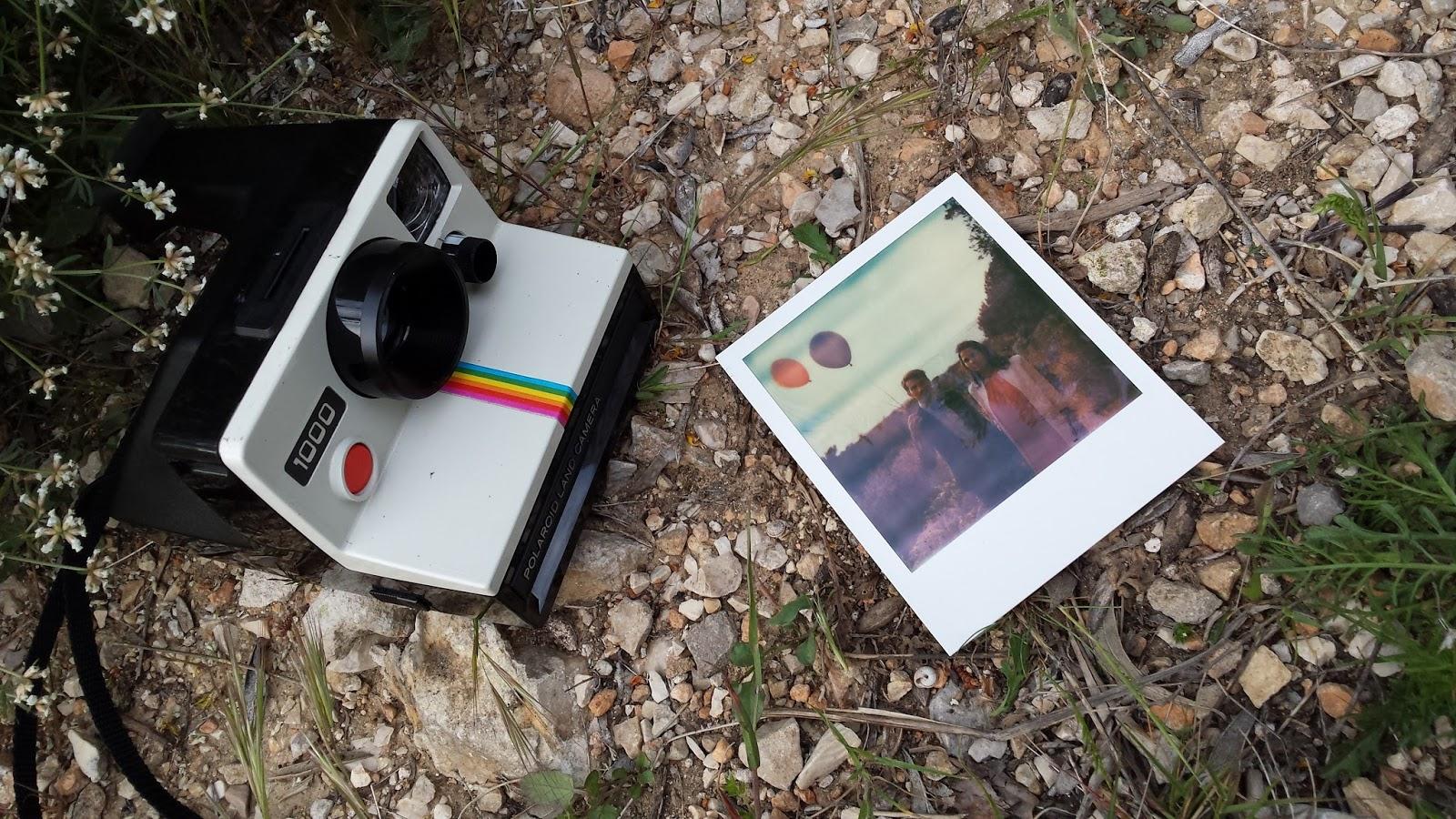 Populaire Les moineaux de la mariée: Des clics, des photos et des souvenirs ! MX17