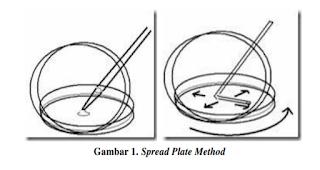 spread plate method microbiology