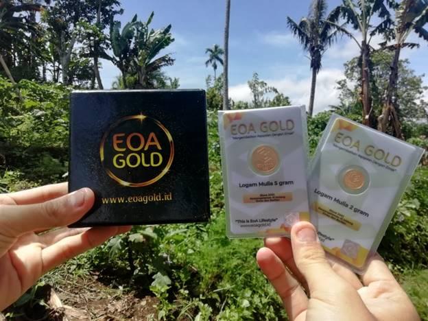 Kelebihan dan Kekurangan EOA Gold