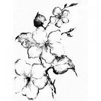 http://scrapkowo.pl/shop,stempel-gumka-flower,1784.html