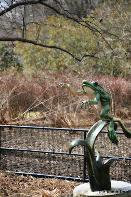 Frog Statue National Zoo Washington DC