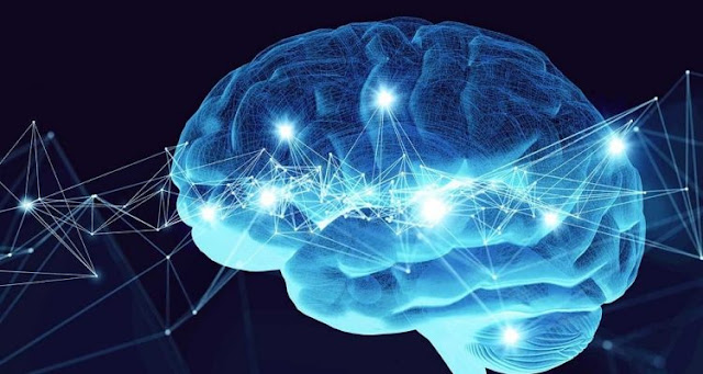 Biological and artificial neurons communicated with each other over the Internet