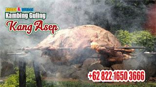 Kambing Guling di Ujung Berung Bandung ! Murah, kambing guling ujung berung bandung, kambing guling bandung, kambing guling ujung berung, kambing guling di bandung, kambing guling,