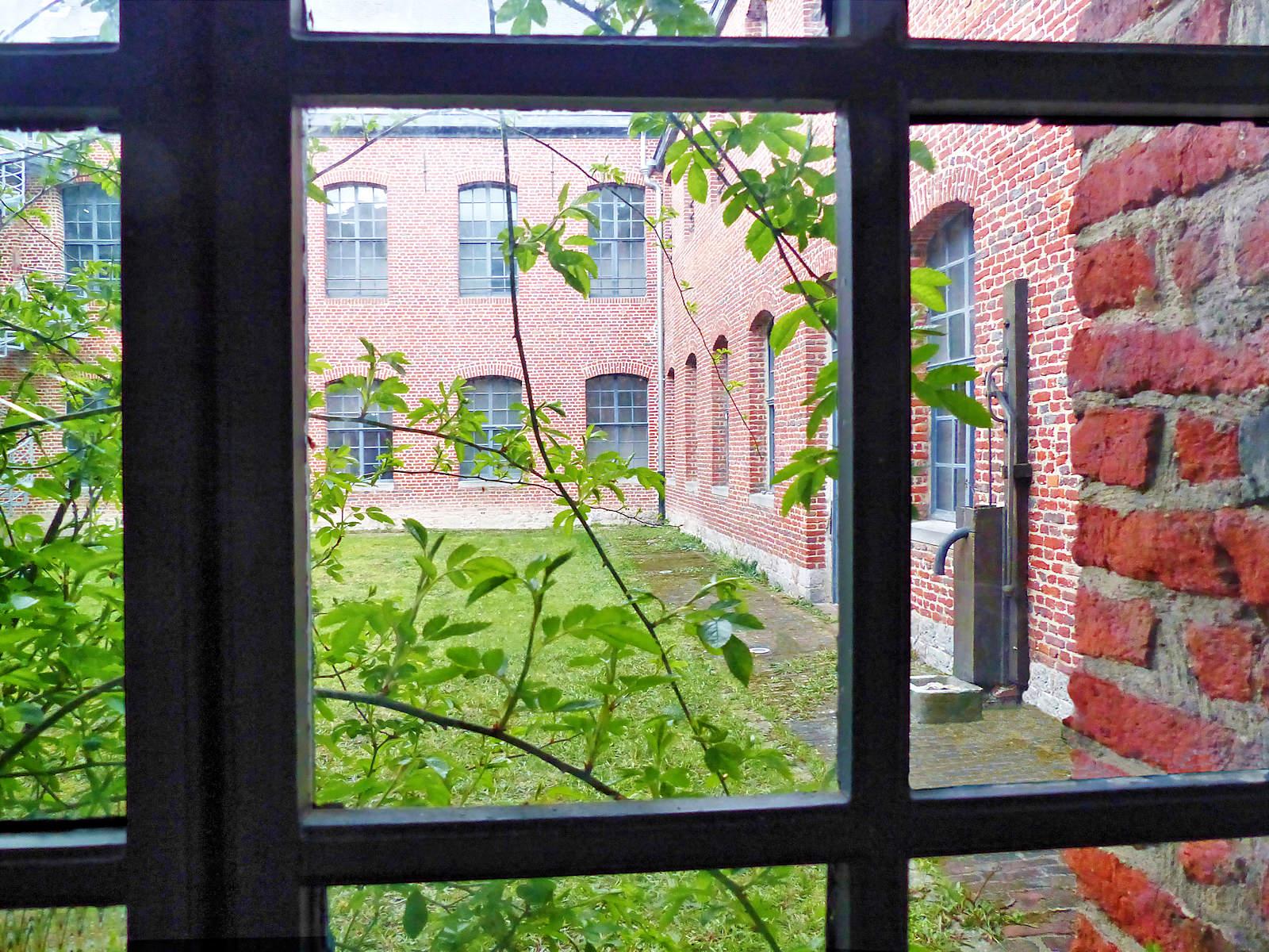 La patio au travers de la fenêtre