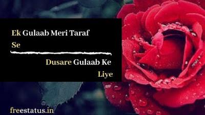 Ek-Gulaab-Rose-Day-Shayari