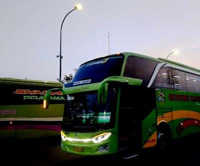 Trik Jitu Terhindar Masuk Angin Saat Naik Bus Malam