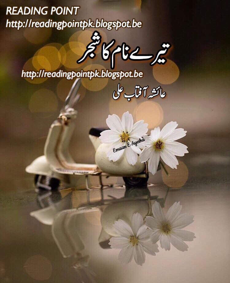 Famous Urdu Novel Buyzin