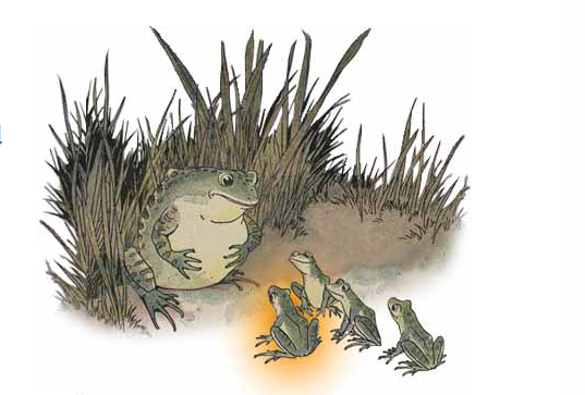 The Frog and the Ox an Aesop Fable