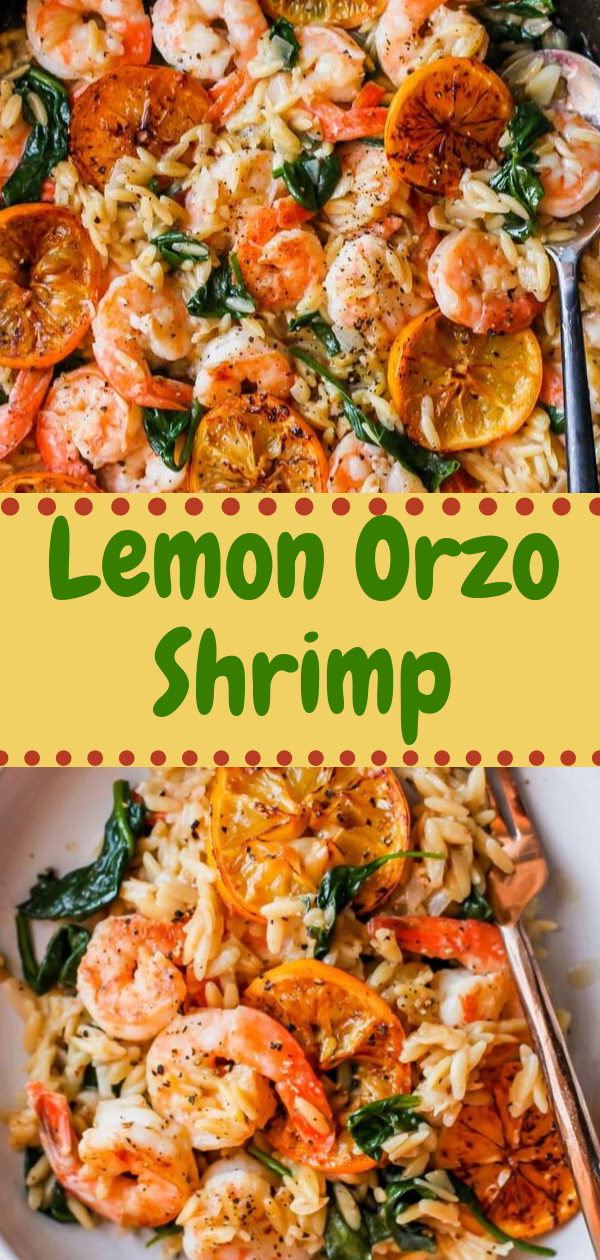 Healthy Recipes | Lemon Orzo Shrimp, Healthy Recipes For One, Healthy Recipes For Diabetics, Healthy Recipes Smoothies, Healthy Recipes For Two, Healthy Recipes Simple, Healthy Recipes For Teens, Healthy Recipes Protein, Healthy Recipes Vegan, Healthy Recipes For Family, Healthy Recipes Salad, Healthy Recipes Cheap, Healthy Recipes Shrimp, Healthy Recipes Paleo, Healthy Recipes Delicious, Healthy Recipes Gluten Free, Healthy Recipes Keto, Healthy Recipes Soup, Healthy Recipes Beef, Healthy Recipes Fish, Healthy Recipes Quick, Healthy Recipes For College Students, Healthy Recipes Slow Cooker, Healthy Recipes With Calories, Healthy Recipes For Pregnancy, Healthy Recipes For 2, Healthy Recipes Wraps, Healthy Recipes Yummy, Healthy Recipes Super, Healthy Recipes Best, Healthy Recipes For The Week, Healthy Recipes Casserole, Healthy Recipes Salmon, Healthy Recipes Tasty, Healthy Recipes Avocado, Healthy Recipes Quinoa, Healthy Recipes Cauliflower, Healthy Recipes Pork, Healthy Recipes Steak, Healthy Recipes For School, Healthy Recipes Slimming World, Healthy Recipes Fitness, Healthy Recipes Baking, Healthy Recipes Sweet, Healthy Recipes Indian, Healthy Recipes Summer, Healthy Recipes Vegetables, Healthy Recipes Diet, Healthy Recipes No Meat, Healthy Recipes Asian, Healthy Recipes On The Go, Healthy Recipes Fast, Healthy Recipes Ground Turkey, Healthy Recipes Rice, Healthy Recipes Mexican, Healthy Recipes Fruit, Healthy Recipes Tuna, Healthy Recipes Sides, Healthy Recipes Zucchini, Healthy Recipes Broccoli, Healthy Recipes Spinach,  #healthyrecipes #recipes #food #appetizers #dinner #lemon #orzo #shrimp