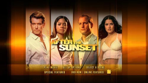 After The Sunset 2004 Dual Audio Hindi Movie Download 480p BluRay