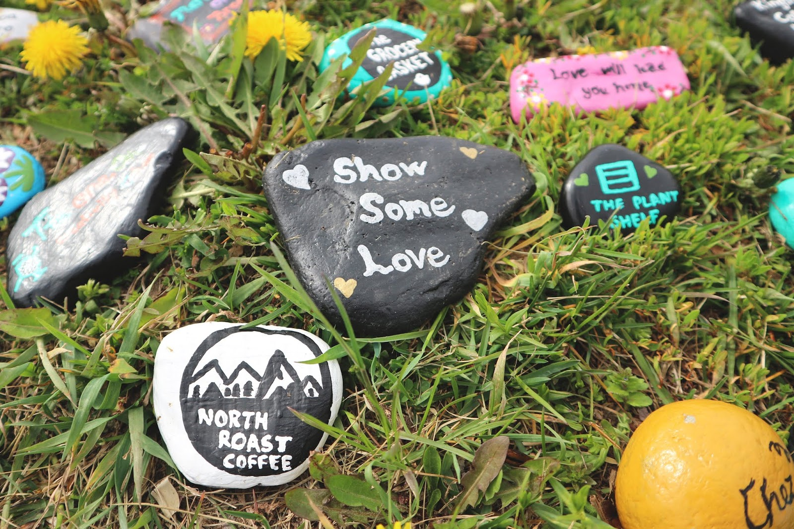 Kindness Rocks in Kingston