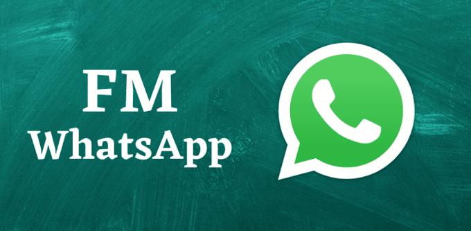 FM WhatsApp v8.92 APK