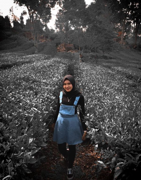 spot foto instagramable kebun teh wonosari