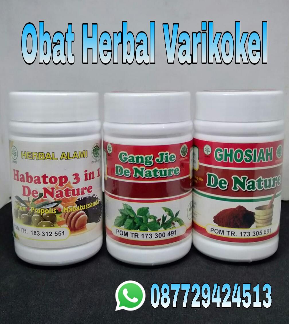 Obat Herbal De Nature: 5 DAFTAR OBAT HERBAL VARIKOKEL DI